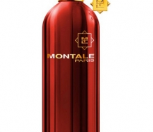 Montale Red Vetyver edp 100ml фото